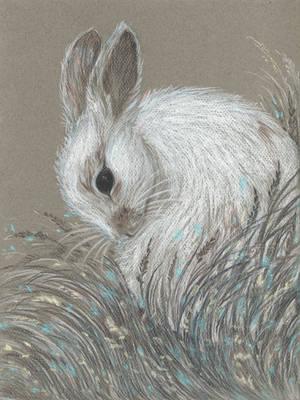 Bunny Cloud by Ephaistien