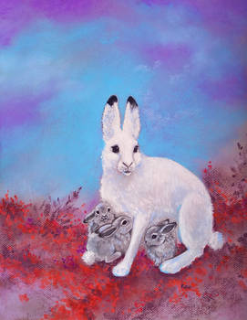 Polar hare and her leverets
