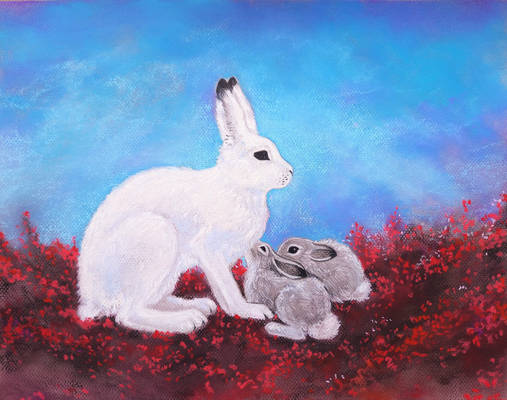 Polar hare with her leverets (another)