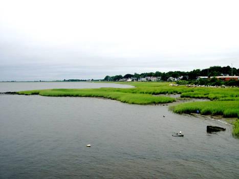 View across grass