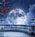 Romantic full moon premade