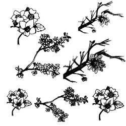 High Resolution Cherry Tree Photoshop Brushes by imakestock