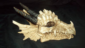 Dragonling Skull by dogatemymanuscript