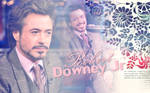 RDJr Robert Downey Jr