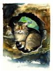 A Cat in a Nest