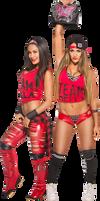 Brie Bella and Nikki Bella WWE Divas Champion