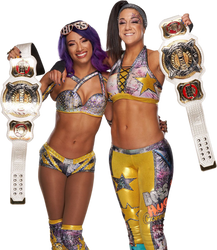 Sasha And Bayley Women's Tag Tag Team Champions by NuruddinAyobWWE