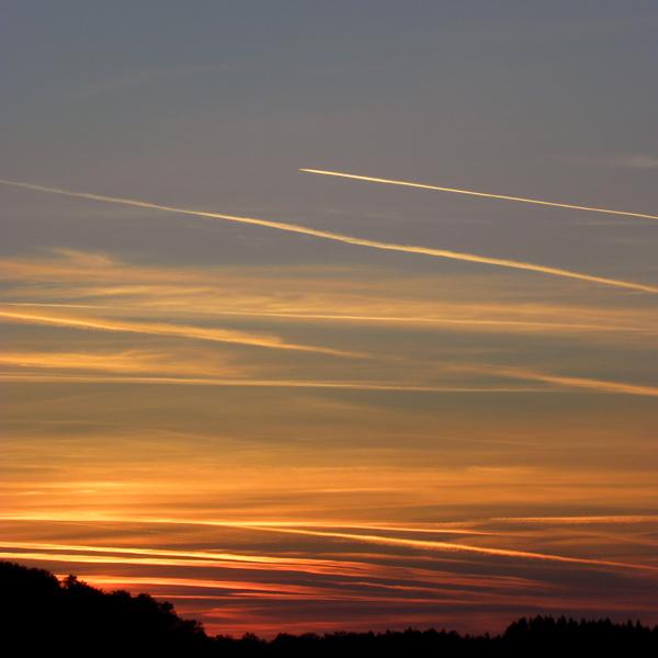 Golden sky by Rosse-San