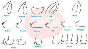 Feline V Canine V Fox V Pony by xXSoft-SilenceXx