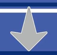 Mega Man Star Force Emblem by TheDnDking
