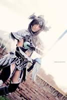 The Warrior by AuraRinoa