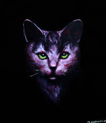 A Cat in the Dark by maatukka