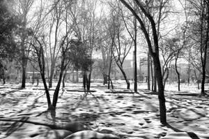 Hidden paradise by spoii