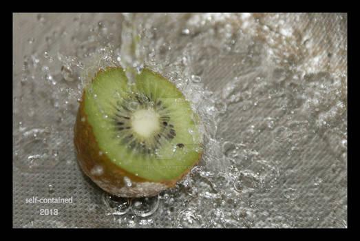 Kiwi in the water