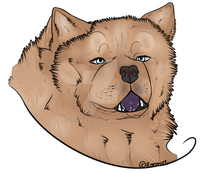 Chow Dog : Lincoln by Remmiee