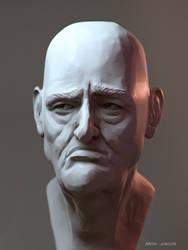 Da Vinci Bust