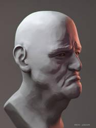Da Vinci Bust (alternate view)