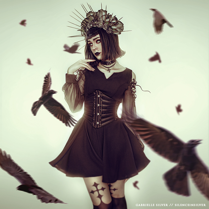 The Silent Raven