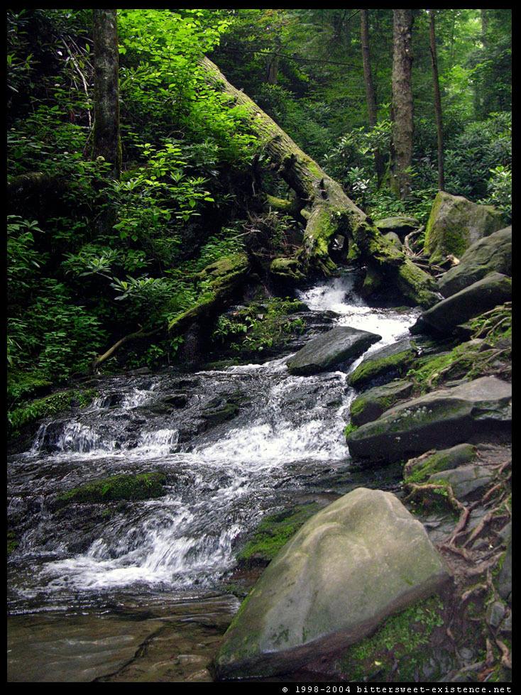 Faerie Cascades II by ransim