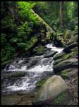 Faerie Cascades II