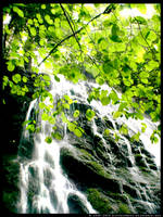 Cataract Falls I by ransim