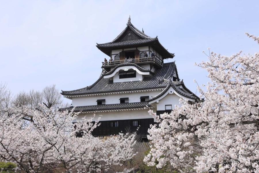 Inuyama Japan  City pictures : Inuyama Castle 01 by nicojay on deviantART