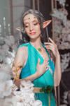 Cosplay from The Witcher. Lara Dorren2