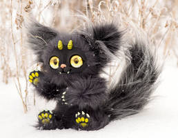 Dark gray cat, yellow eyes