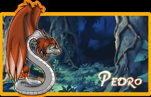 Pedro__banner