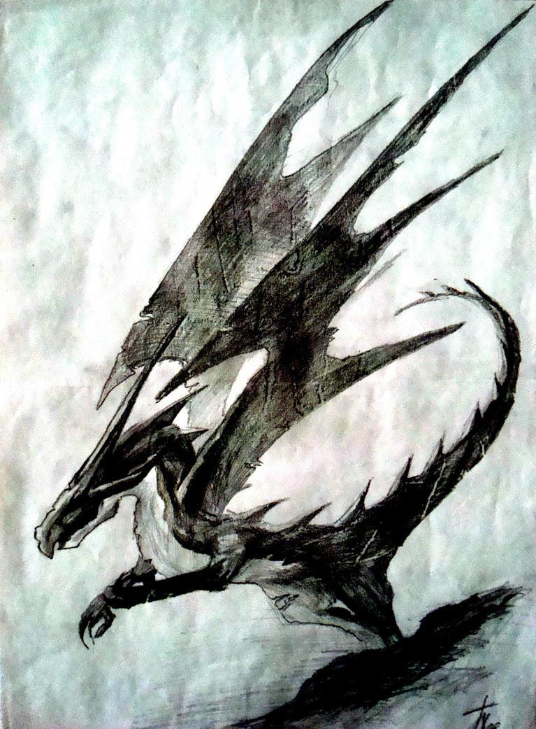 http://th05.deviantart.net/fs71/PRE/i/2010/289/0/1/dragon_08_by_mattbarley-d30utd7.jpg