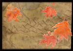 Map and leaves