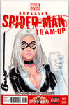 Black Cat Blank Cover