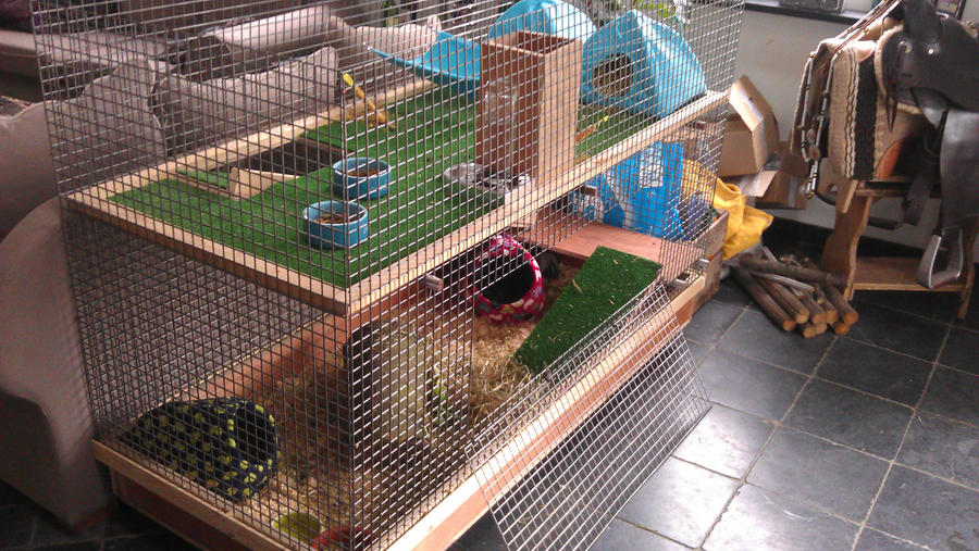 Guinea pig cage by kleine alain on deviantart for How to guinea pig cage