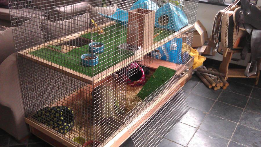 Guinea pig cage by kleine alain on deviantart for Large indoor guinea pig cages