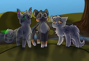 (Graystripe's vow spoilers!!) We Are Warriorclan!