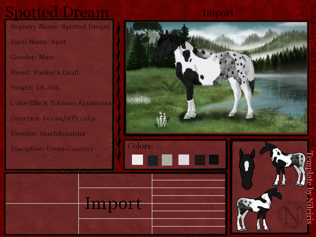 Spotted Dream--- Reference Sheet by tilachihuahua
