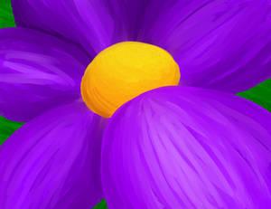 It looks like I drew a flower
