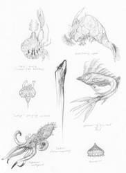 Sea Creatures of Tarn
