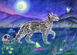 Wolf-eye night