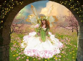 The Fae In The Field