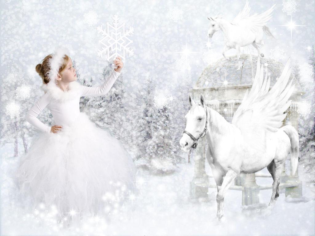 The Snowflake Catcher by TheFantaSim