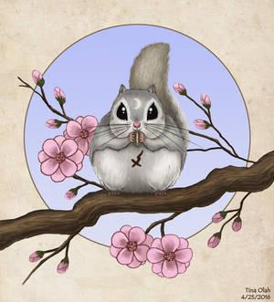 Momo on a Sakura Branch