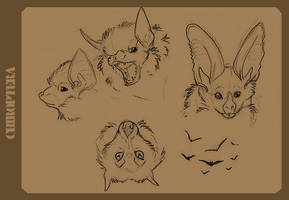Bat Sketchies by aureath