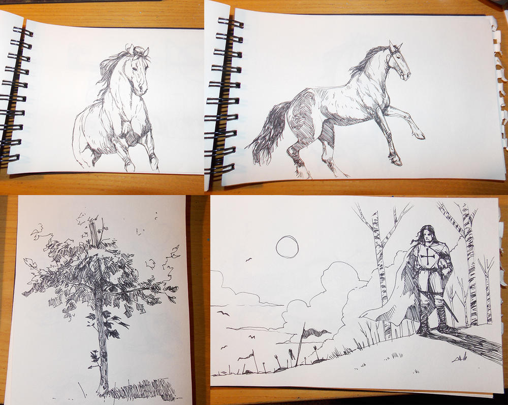 Sketches by zoppy