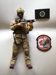 Ace Combat - Erusean Republic Royal Commando