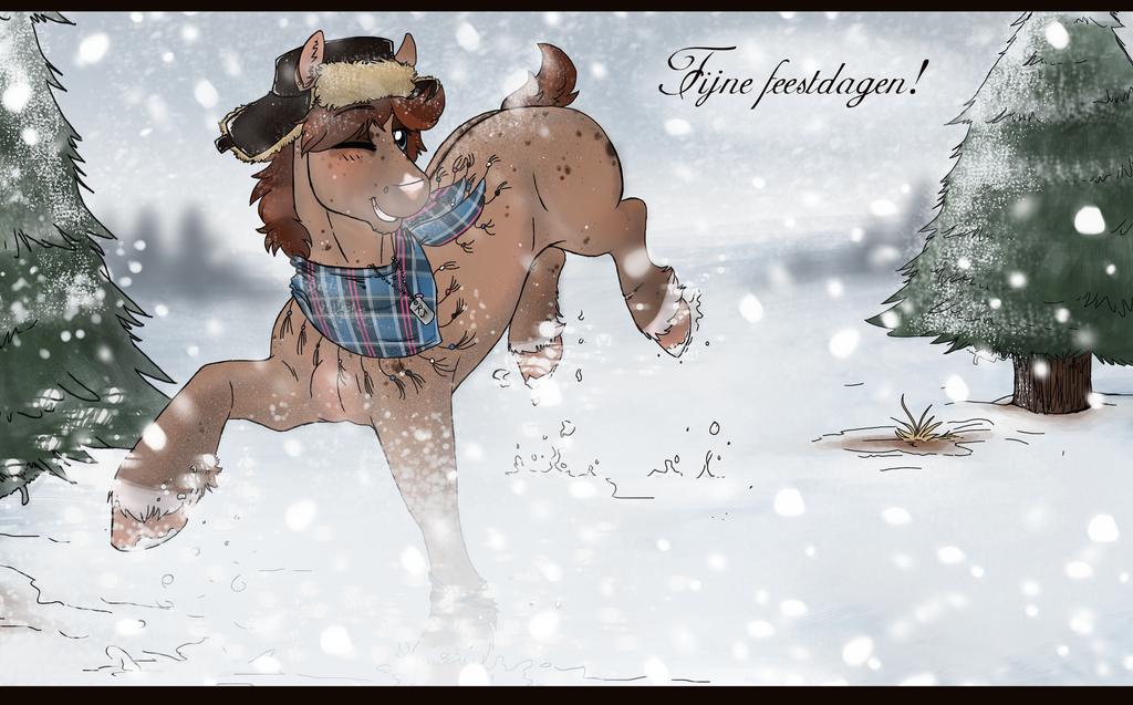 Fijne Feestdagen/Happy Holidays by RomyvdHel