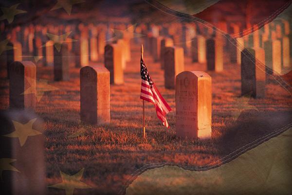 Veterans Day by Chrippy