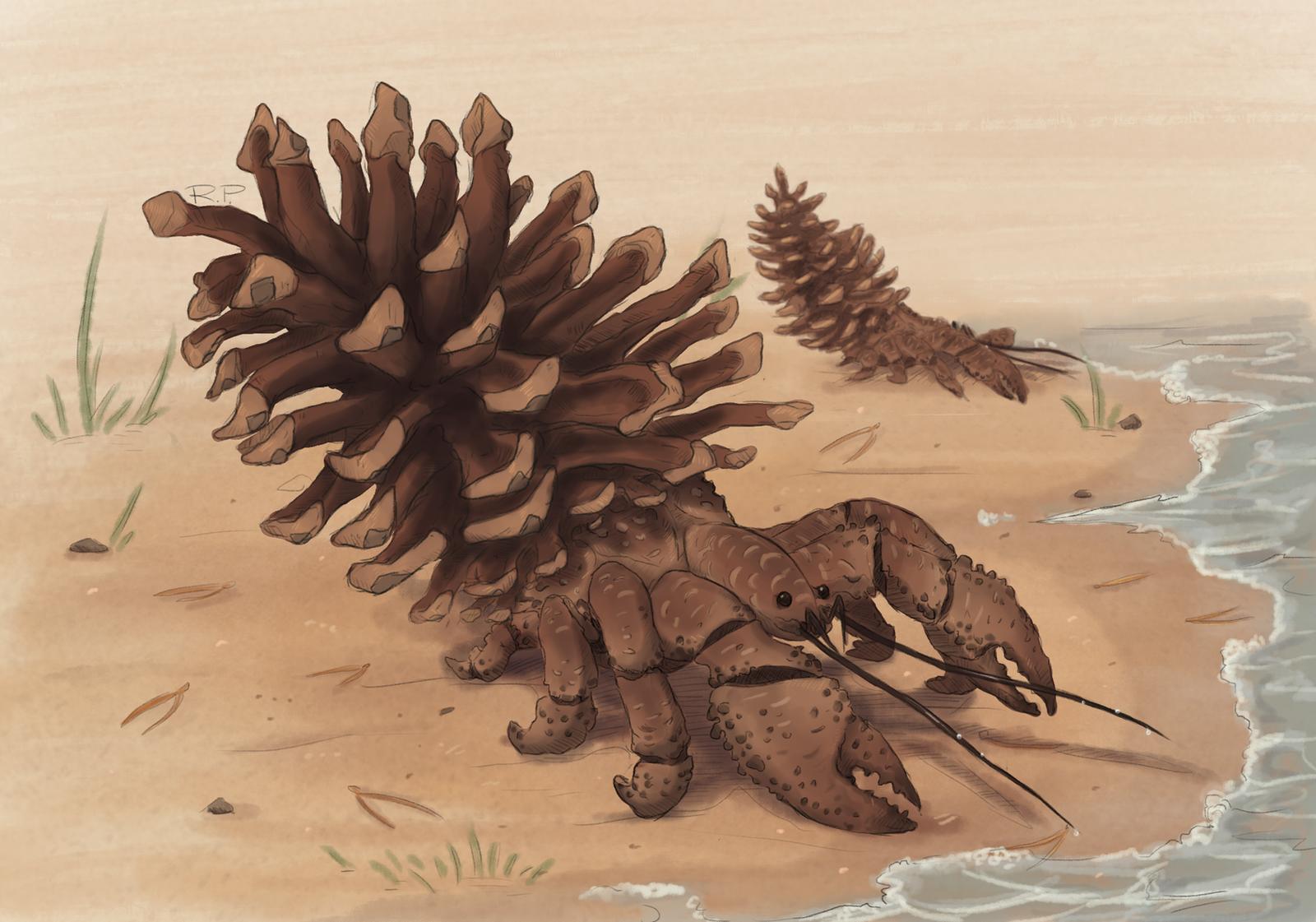 Pine crab by Jakiron