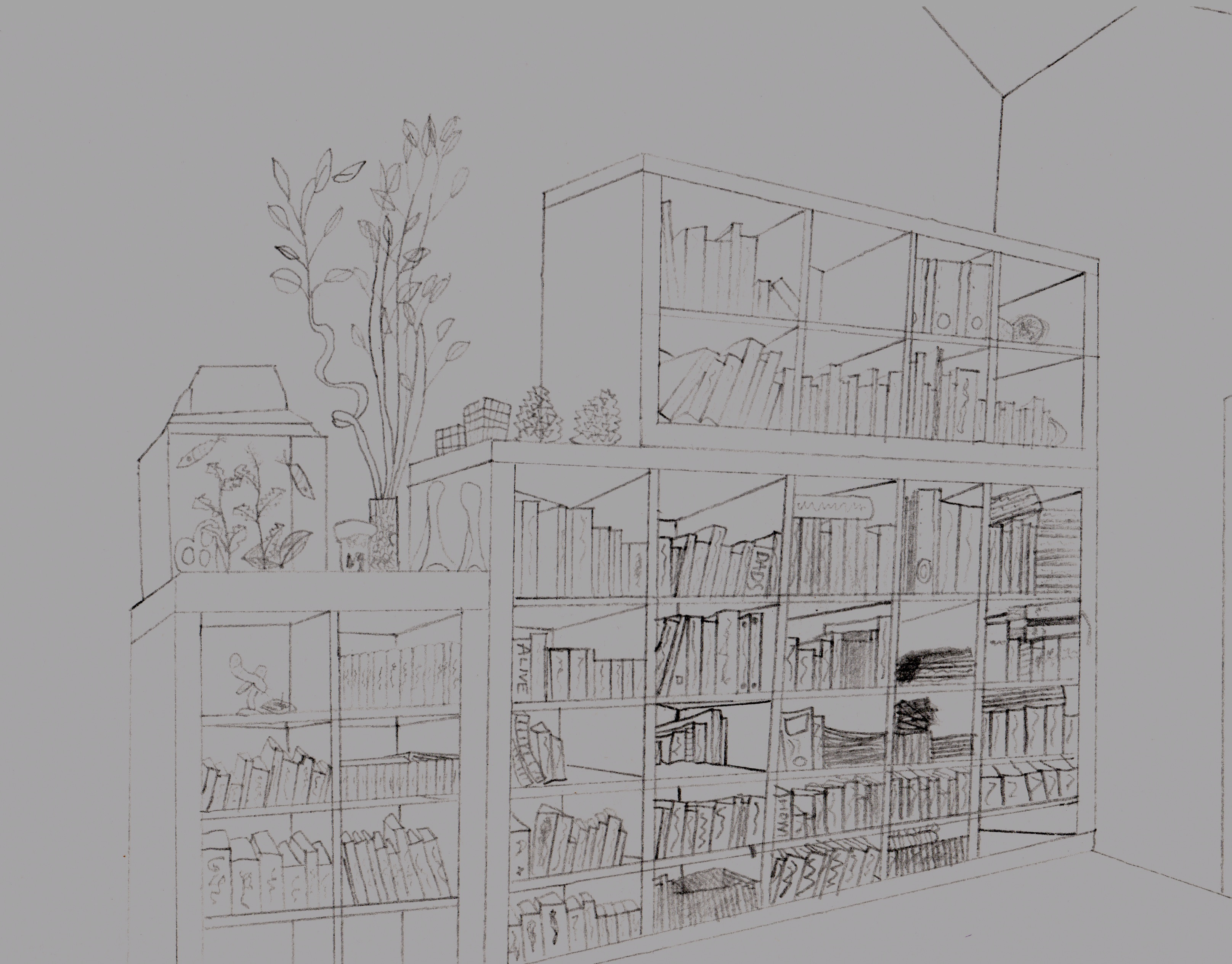 Bookcase Sketch By TheSkybax On DeviantArt