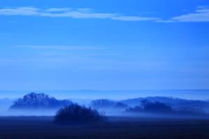 Misty wetlands No.2 by qaxtx